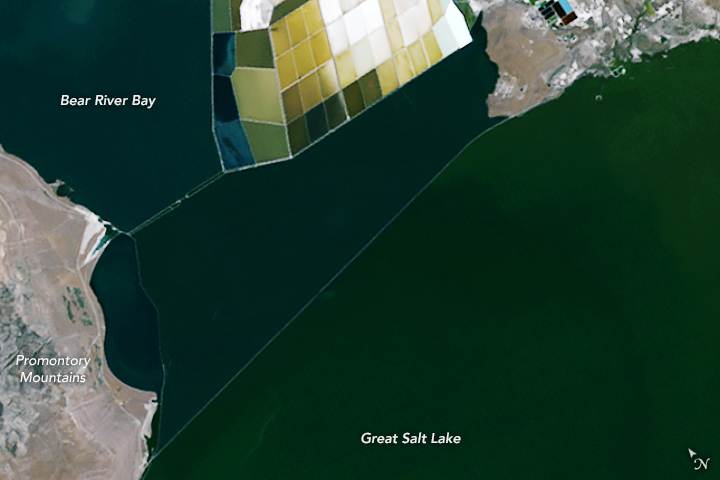Coloring the Great Salt Lake - related image preview