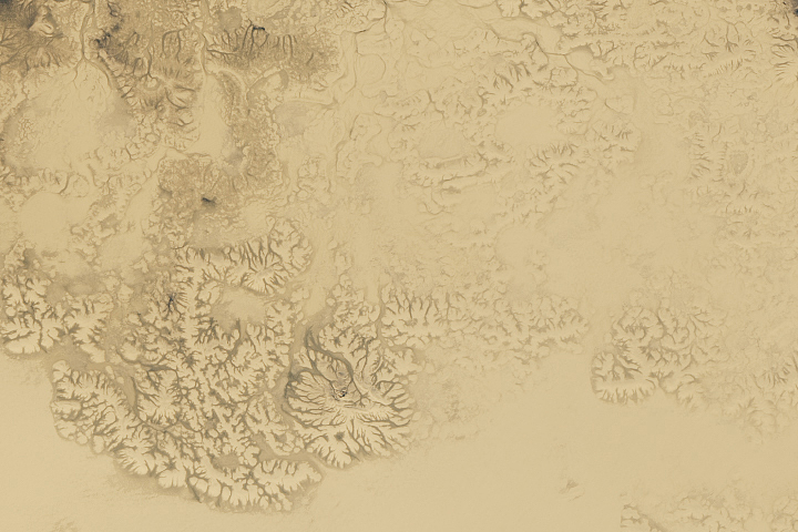 Sandy Plains in the Arctic - selected image