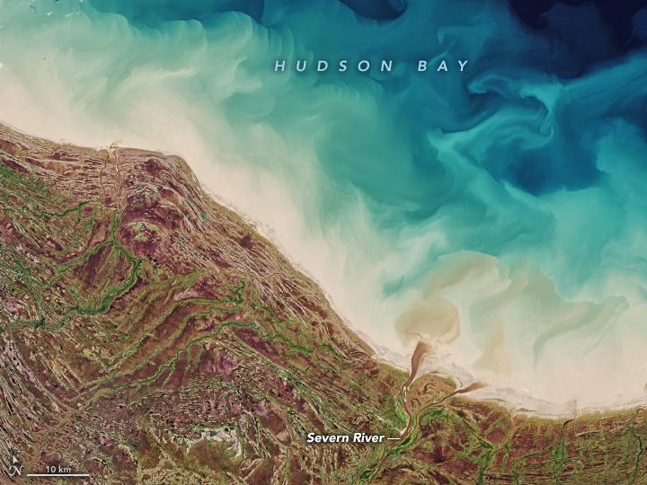Rebounding in Hudson Bay