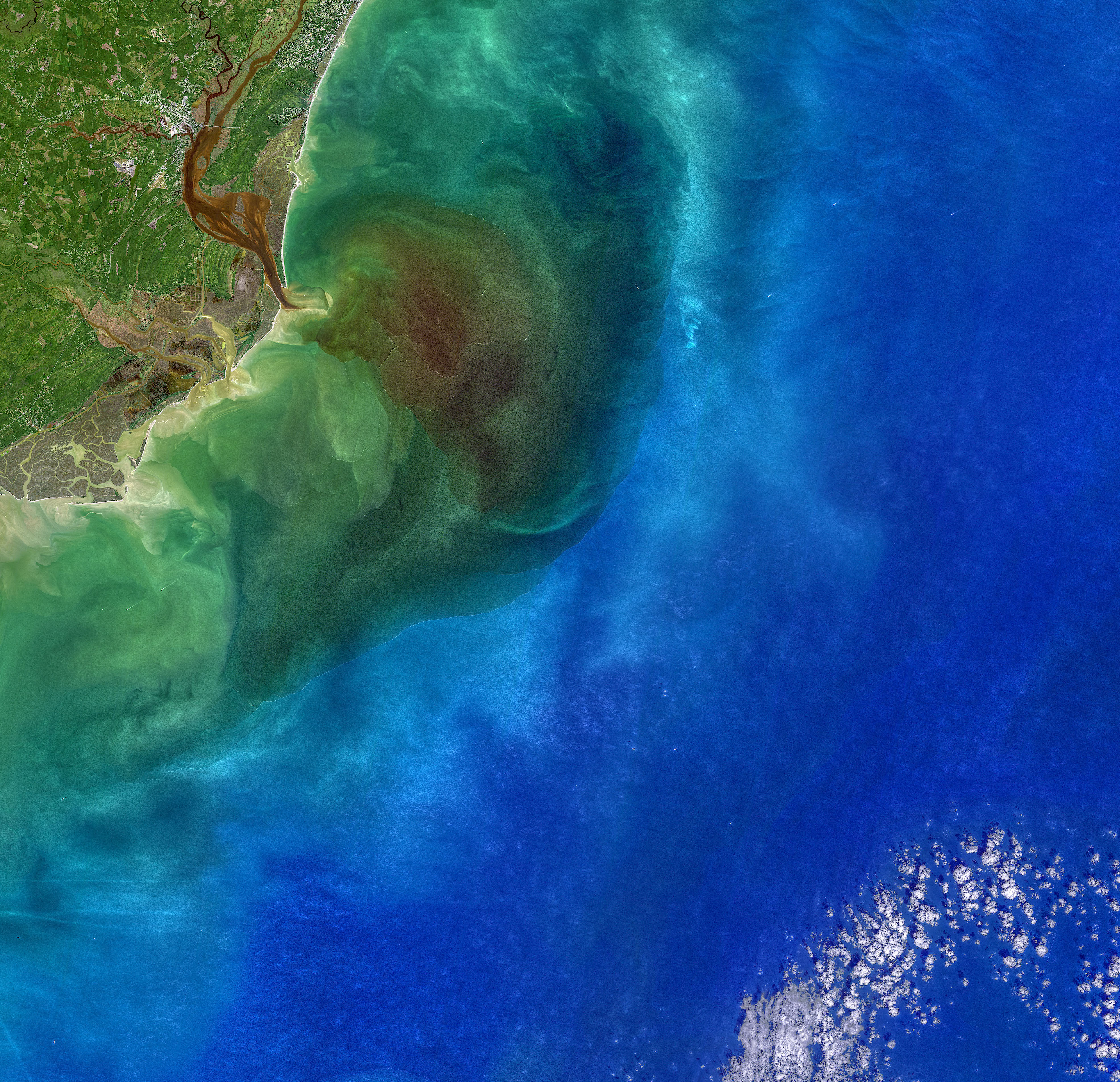 Stained Winyah Bay - related image preview