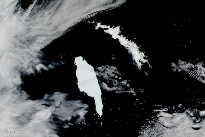 Iceberg Closes In on South Georgia - related image preview