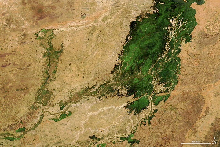 An Inland Delta Flooded - related image preview