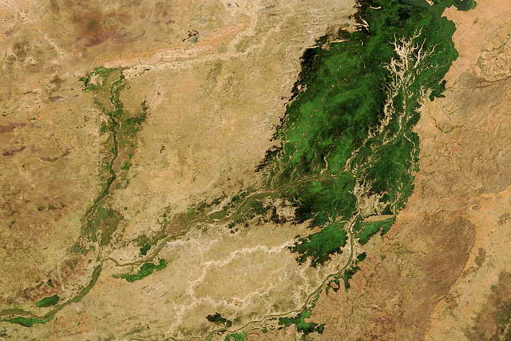 An Inland Delta Flooded - selected image