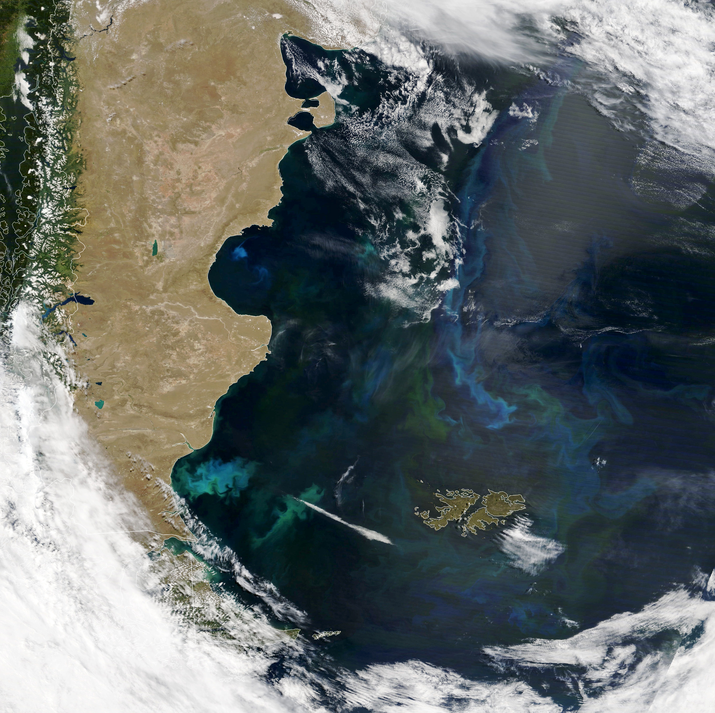 Phytoplankton Factory in the Argentine Sea - related image preview
