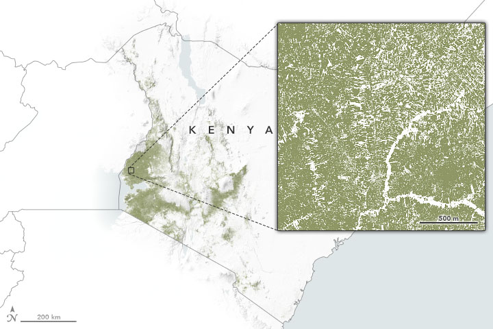 NASA Data Aid Food Security Assessments in Kenya - related image preview
