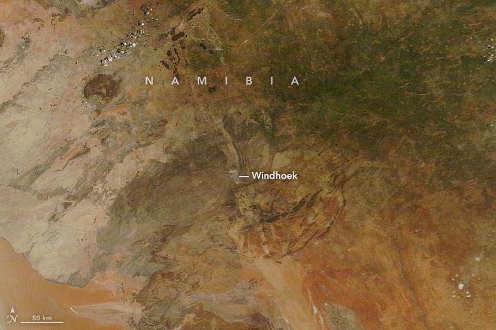 Abundant Rain Turns Namibia Green