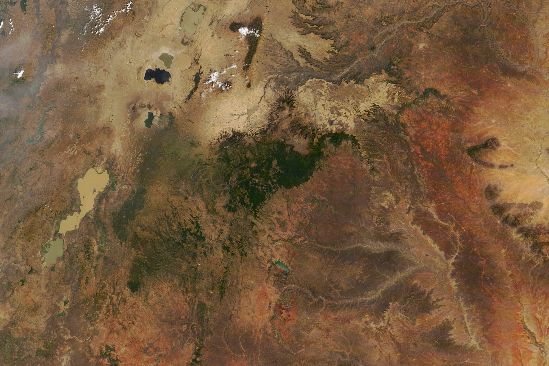 Ethiopia's Forest in the Clouds - related image preview