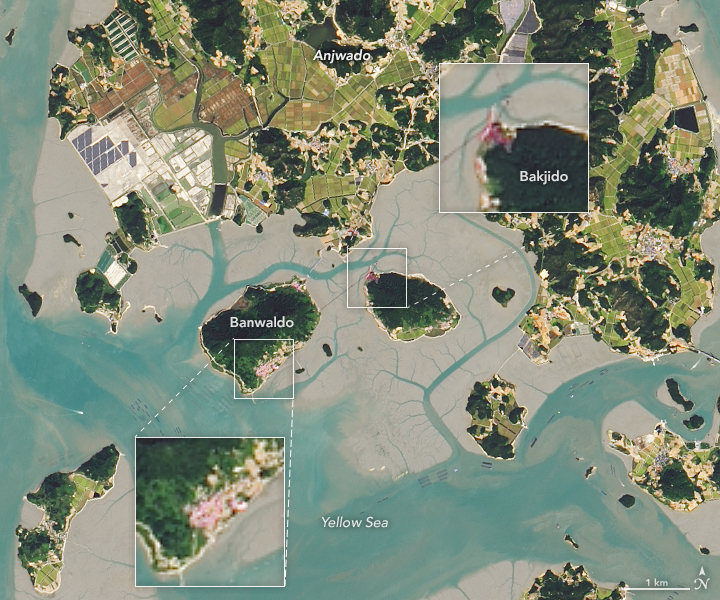 A Thousand Islands in South Korea - related image preview