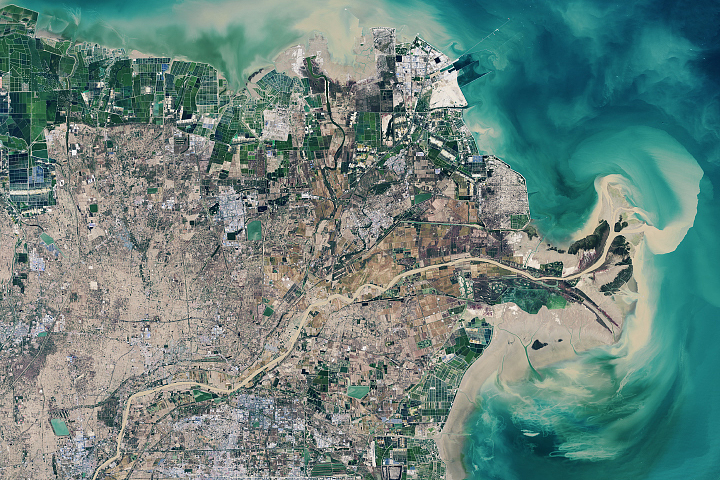 Building Up the Yellow River Delta - selected image