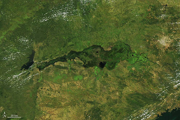 Zambia's Kafue Flats - related image preview