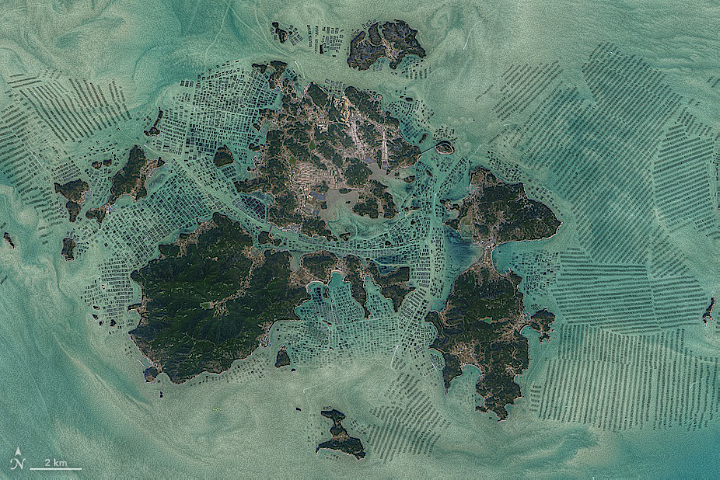 Green Harvest in South Korean Waters - related image preview