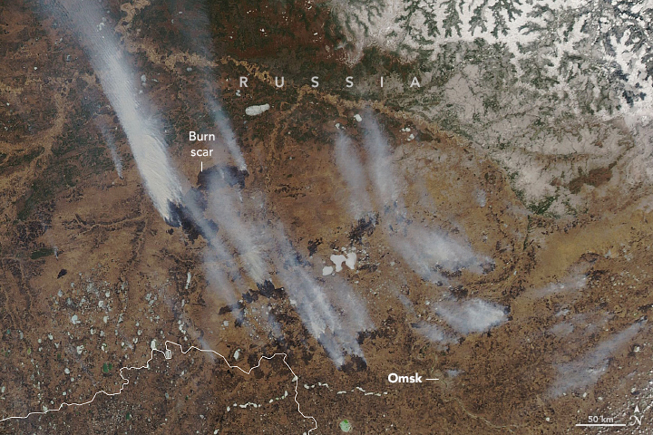 Wildfires and Smoke in Siberia - related image preview