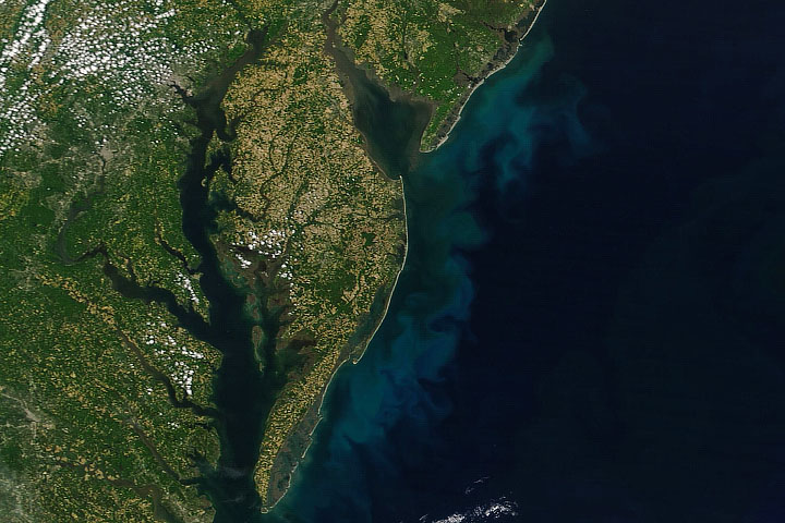 The Blooming Mid-Atlantic