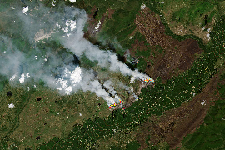 Overwintering Fires on the Rise - selected image
