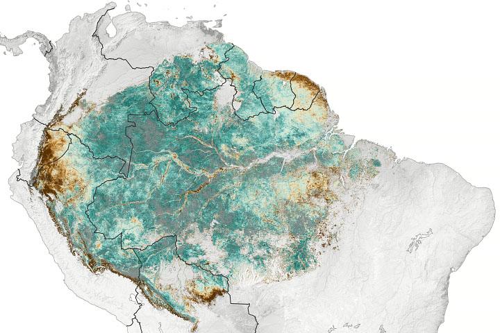 Satellite Senses Subtle Amazon Seasonality