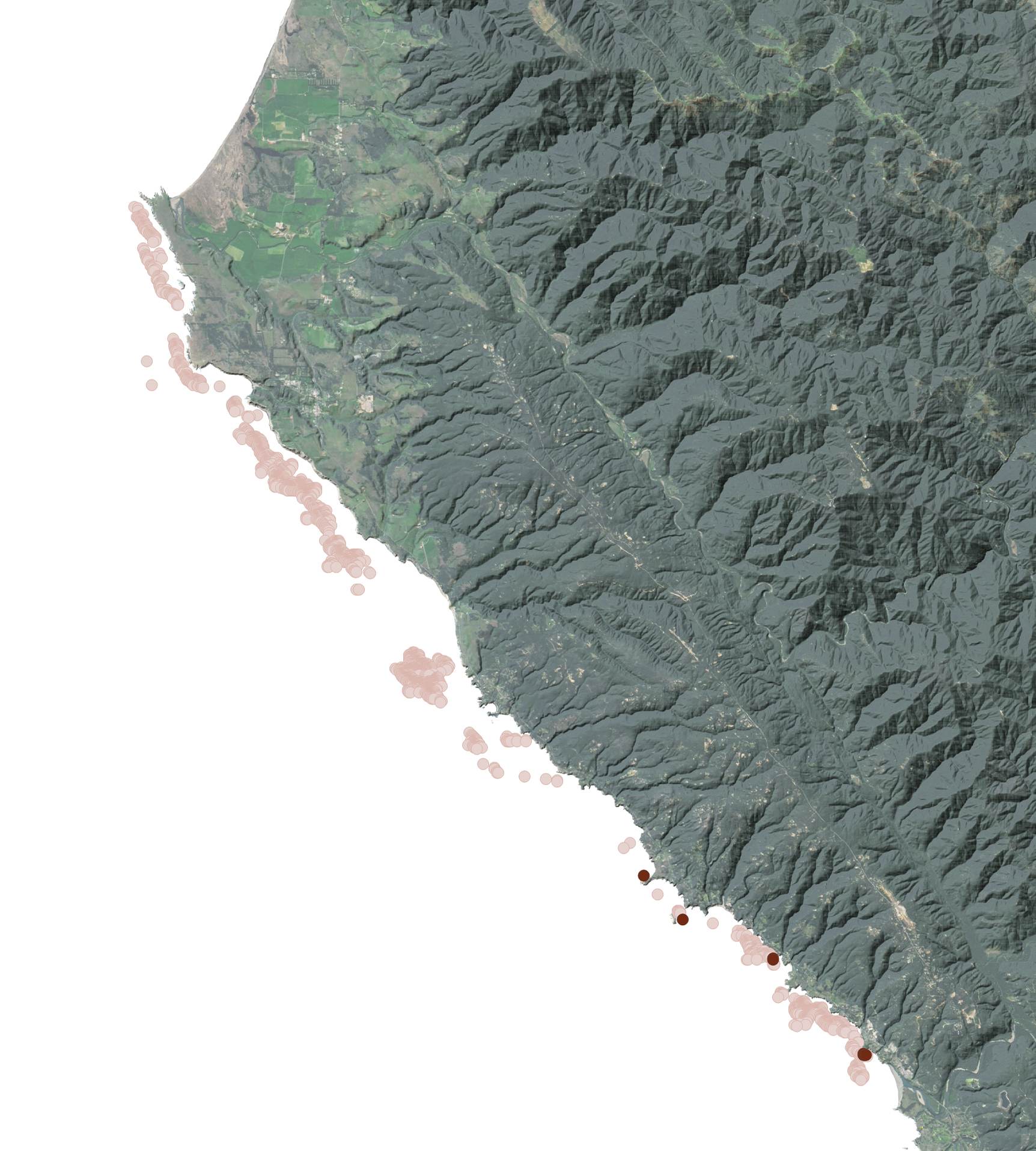 Monitoring the Collapse of Kelp Forests - related image preview