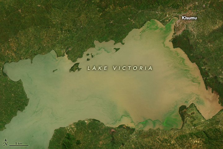 Lake Victoria's Rising Waters - related image preview