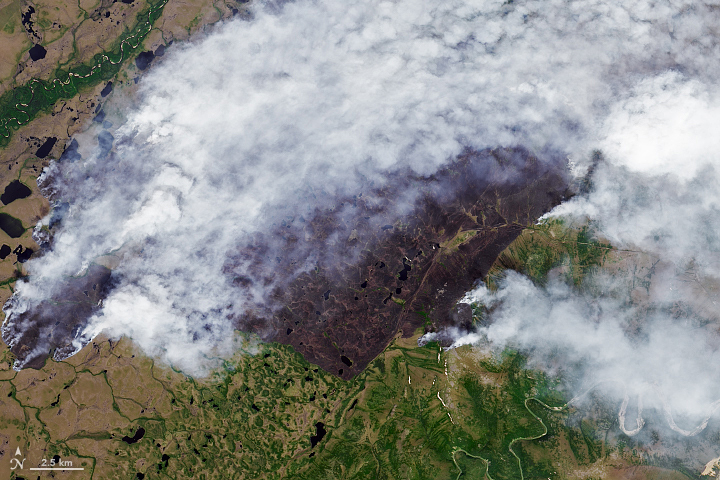 Fires Scorch the Sakha Republic - related image preview