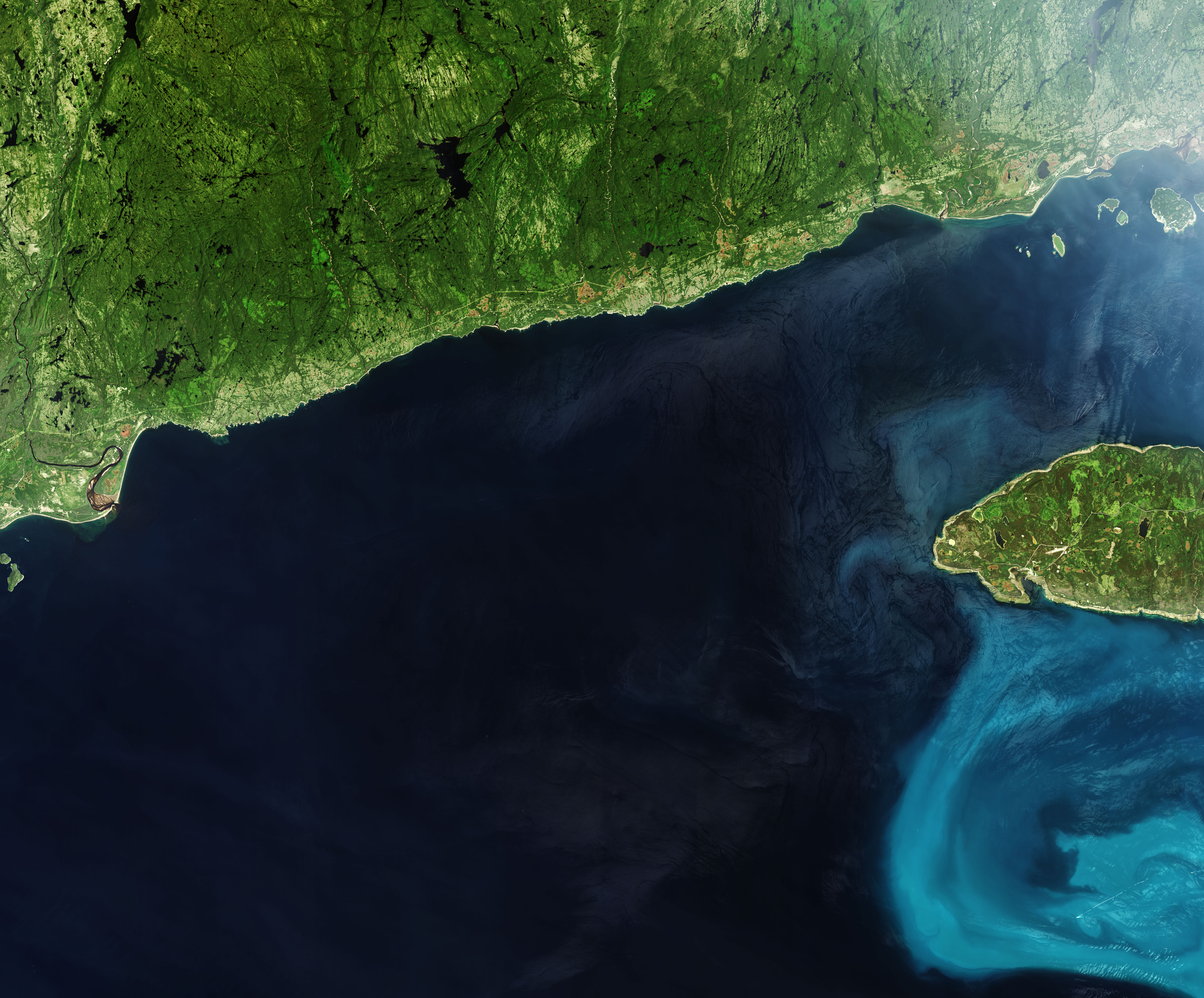 The Blooming Gulf of St. Lawrence - related image preview