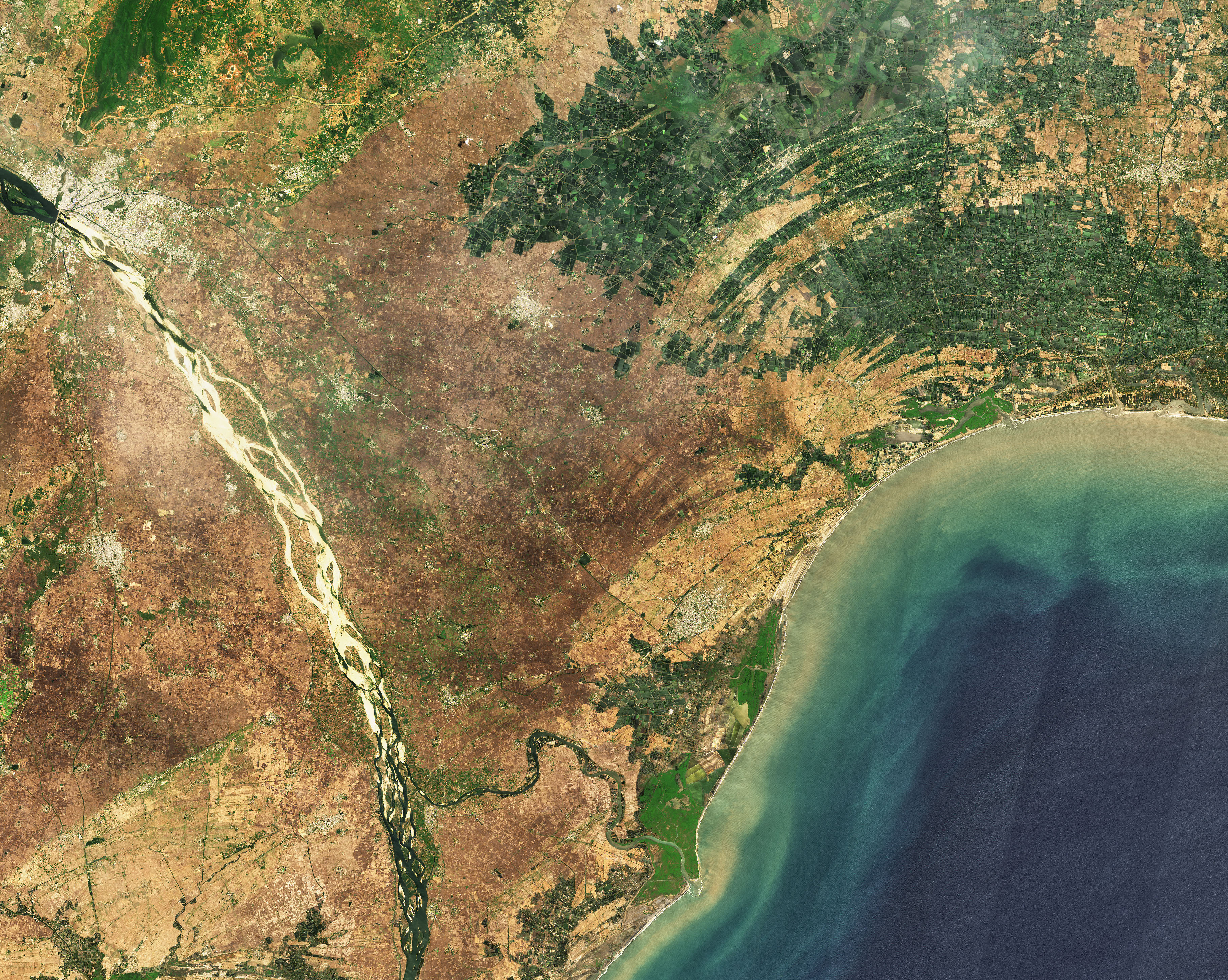 An Abundance of Aquaculture in Andhra Pradesh - related image preview