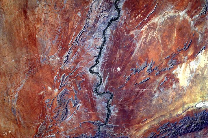 Seeing Orange in the Kalahari - related image preview