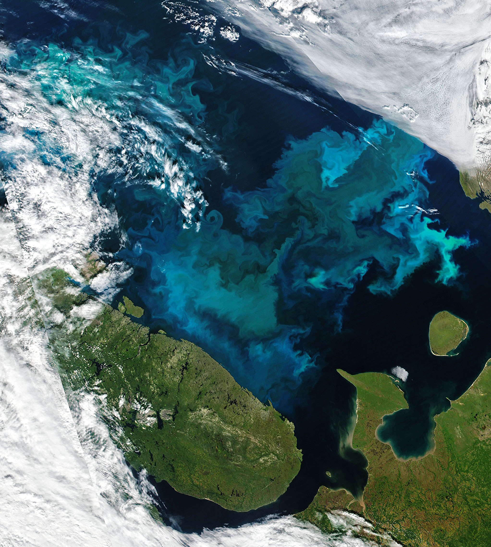 Summer Color in Northern Seas - related image preview
