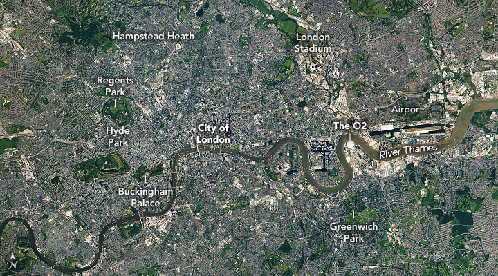 A London Mosaic - related image preview