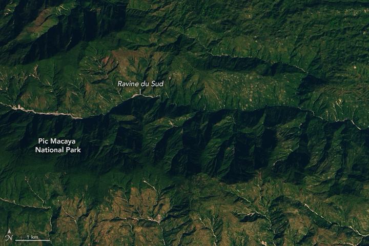 Earthquake in Haiti Triggers Landslides