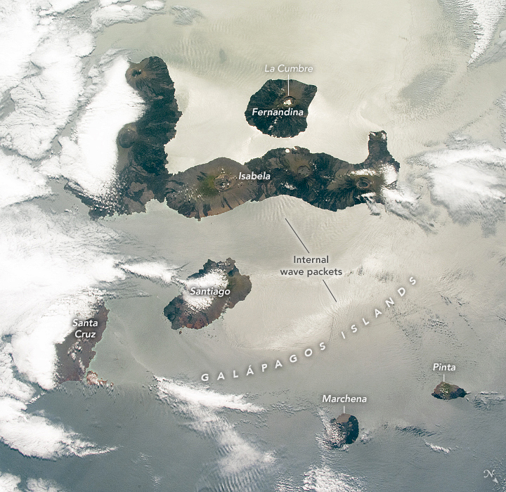 Spotlight on the Galápagos Islands - related image preview