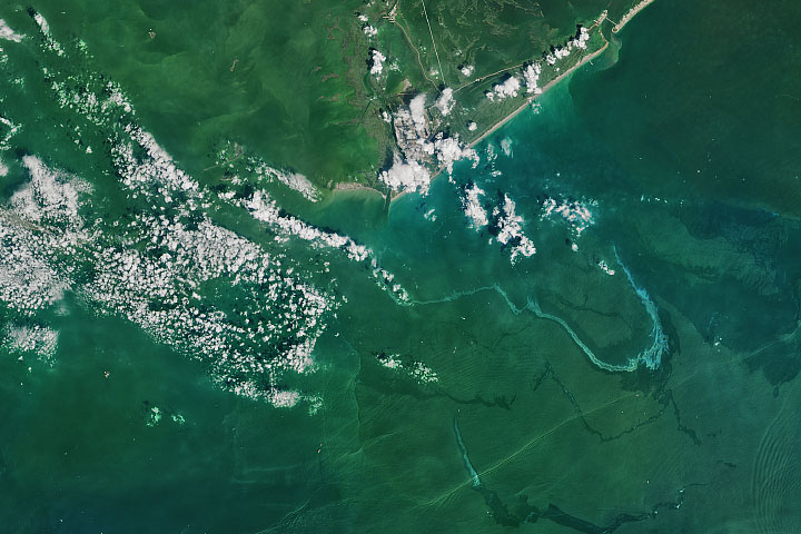 Hurricane Ida Leaves a Trail of Oil