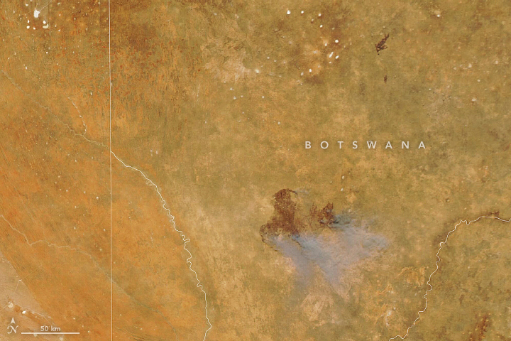 A Fast-Moving Fire in Kgalagadi - related image preview