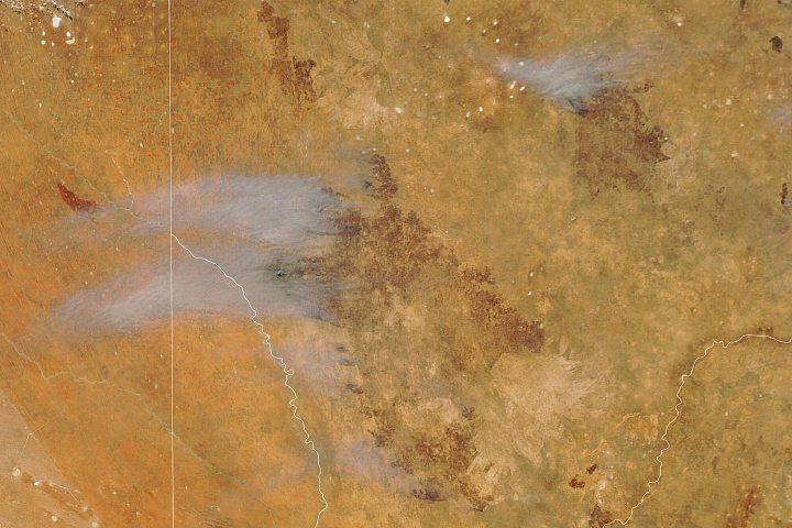 A Fast-Moving Fire in Kgalagadi - selected image