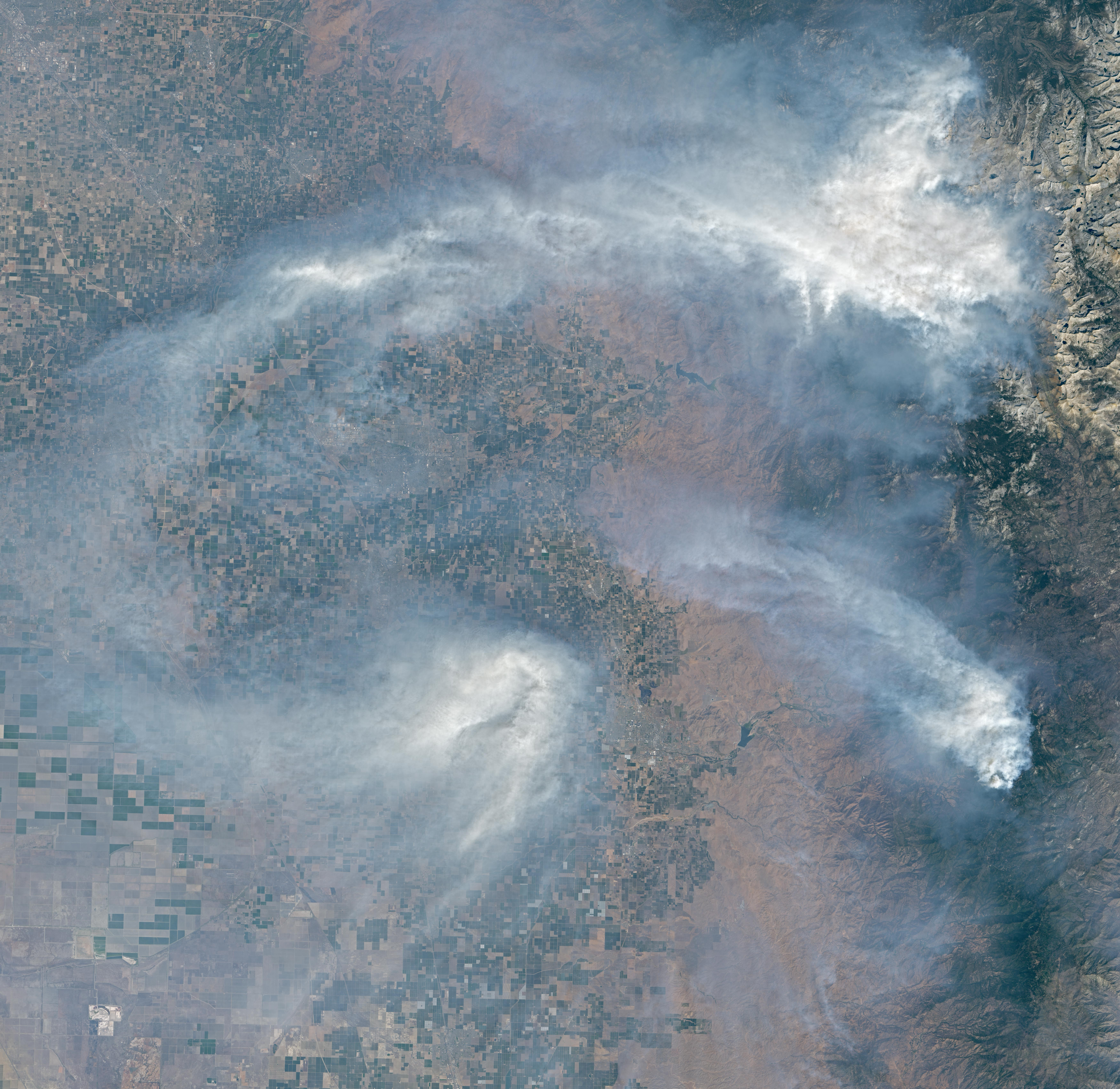Fire Encroaching on Giant Sequoias - related image preview