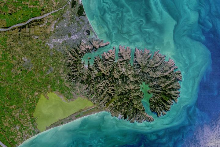 Coastal Color in New Zealand
