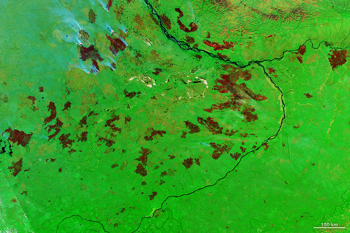 A Record-Breaking Year for Fire in Sakha - related image preview