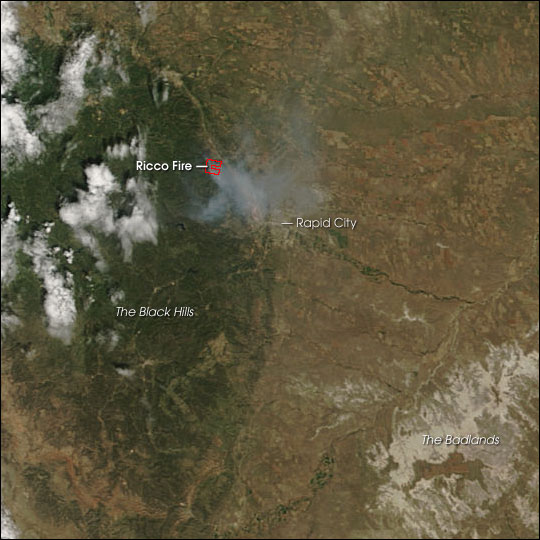 Ricco Fire in Black Hills National Forest
