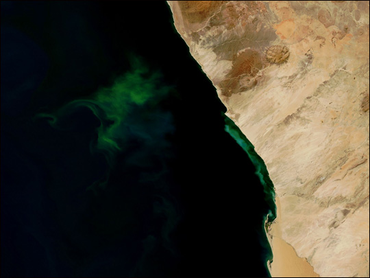 Phytoplankton and Hydrogen Sulfide off the Coast of Namibia