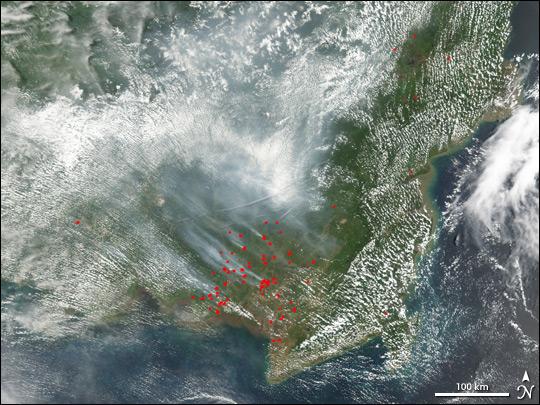 Fires in Borneo