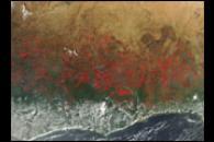 Fire Season in Northern Africa
