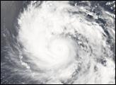 Typhoon Ewiniar