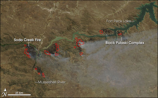 Wildfires in Montana and Wyoming