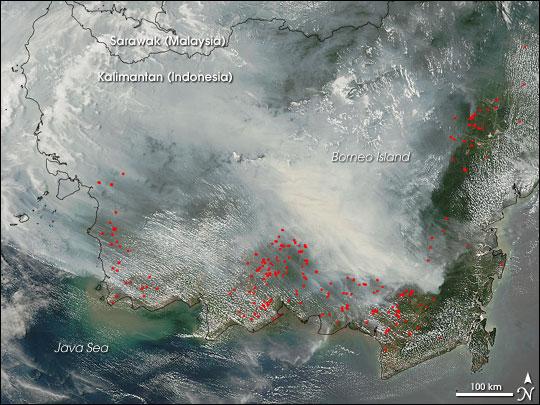 Fires on Borneo