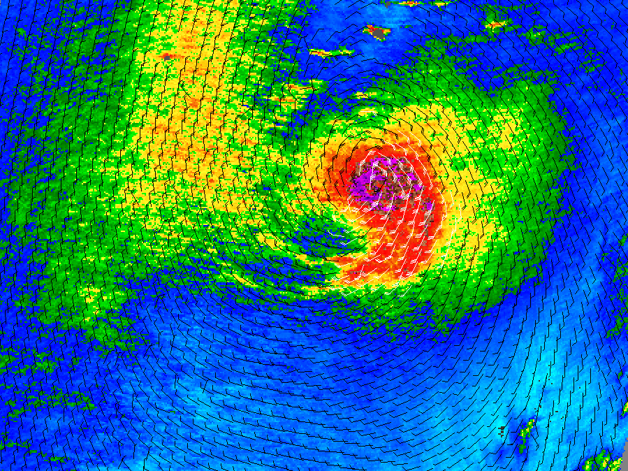 Hurricane Paul - related image preview