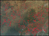 Northern Africa Fire Season