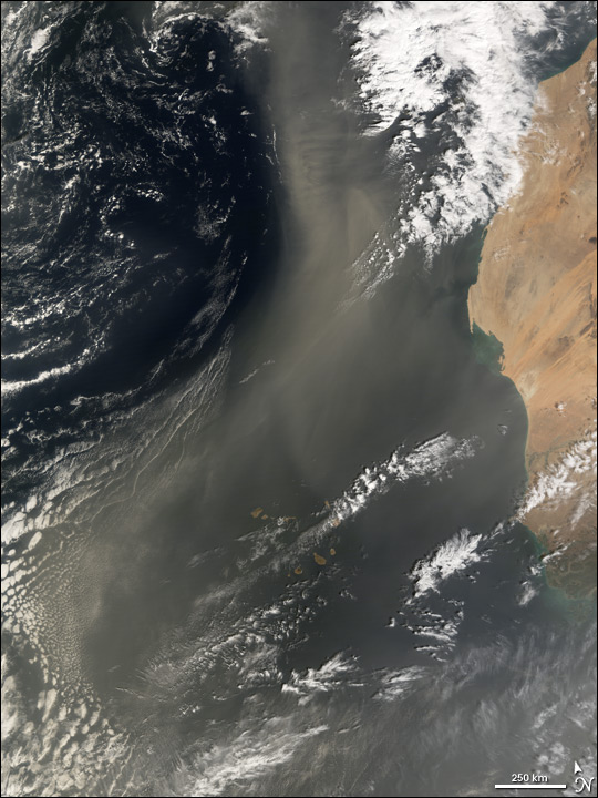 Dust Blowing over the Canary Islands