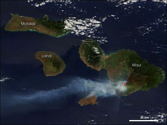 Forest Fire on Maui