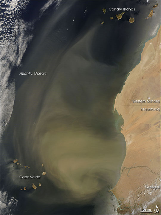 Dust Plume off the West Coast of Africa