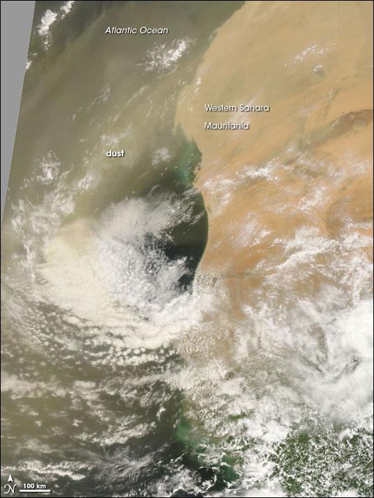 Saharan Dust Plume