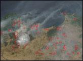 Fires in Algeria