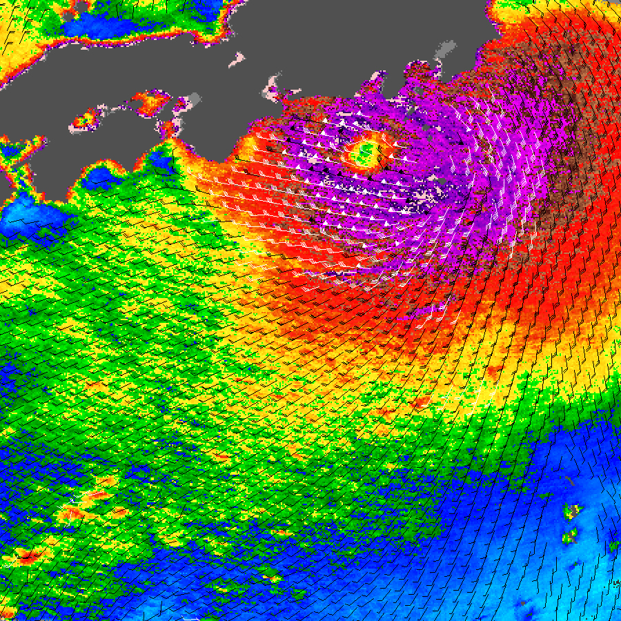 Typhoon Fitow - related image preview